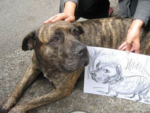 What a sweet face! Drawn at an outdoor event.
