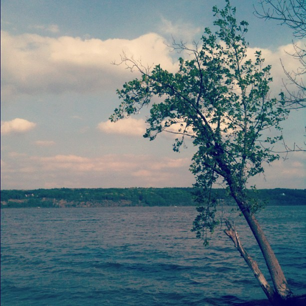 #hudsonvalley  (Taken with instagram)