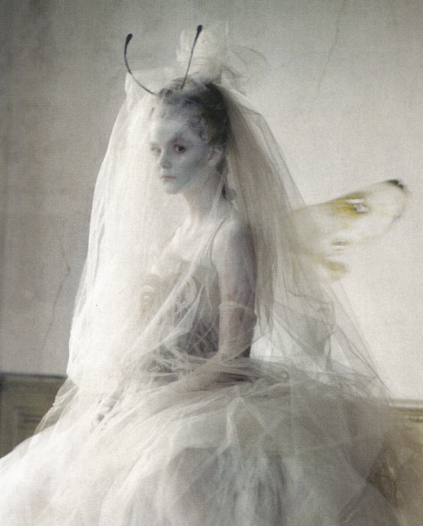lavandula:  imogen morris clarke shot by tim walker for vogue italia