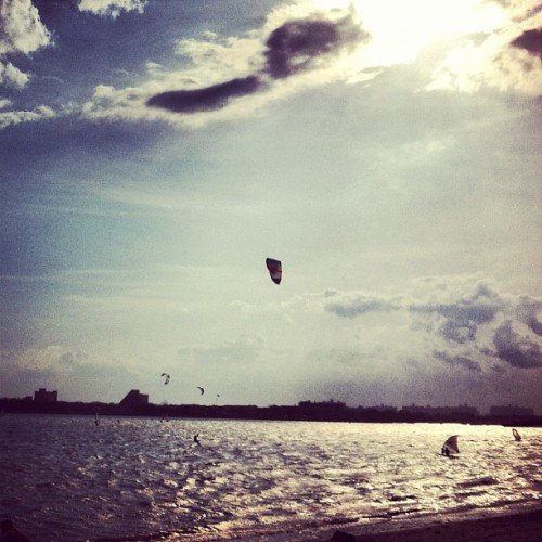 Lots of wind and kite surfers in Brooklyn Bay.  (Taken with instagram)