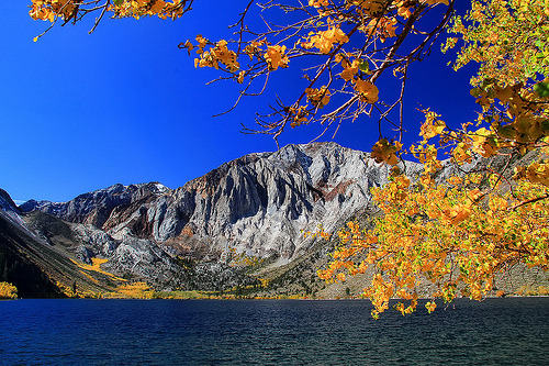 oblivi0n-:  Fall at Convict Lake (by Dave Toussaint (www.photographersnature.com))