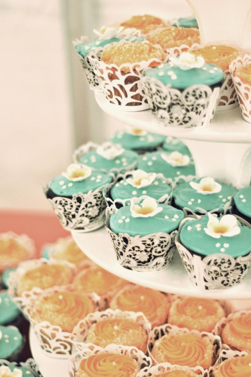 Yummy cupcakes Follow n I'll follow back