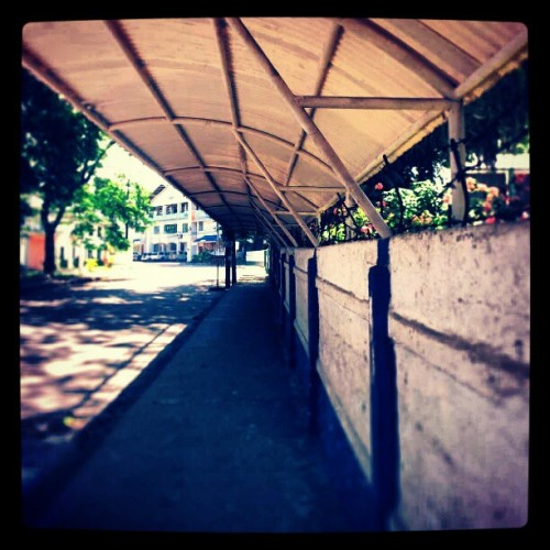 Semi tunnel #instagram #instagramers #instagramaddict #igers #ignation #followback #followforfollow #follow4follow #followbackalways #teamfollowback #igersphilippines #dumaguete #picoftheday #photooftheday #bestoftheday #android #galaxynote #100likes #75likes #50likes #25likes  (Taken with instagram)