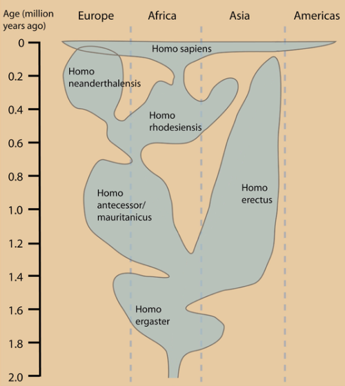 landofoblivion:  fictionincarnate:  Helpful graphic is helpful.  Here's a good chart  And, of course, the only ones we know of to have reached Antarctica are Homo sapiens.