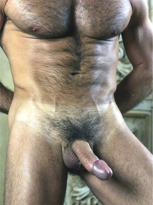 i-love-big-fat-hairy-cocks:  Follow me —-> I-LOVE-BIG-FAT-HAIRY-COCKS  Check out my —-> ARCHIVE