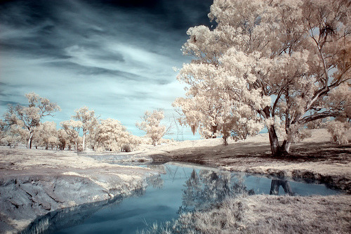 tenebrarumanimos:  Dam Reflections (by Naomi Frost)