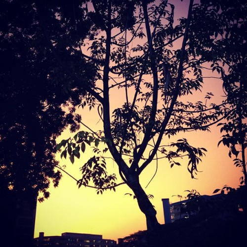 Orange sky (Taken with instagram)