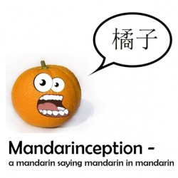 Mandarinception,  A mandarin saying mandarin in mandarin!