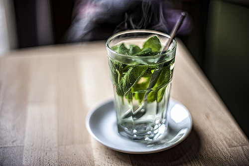 artpixie:  Hot Fresh Peppermint Tea (by Siniša Jagarinec)