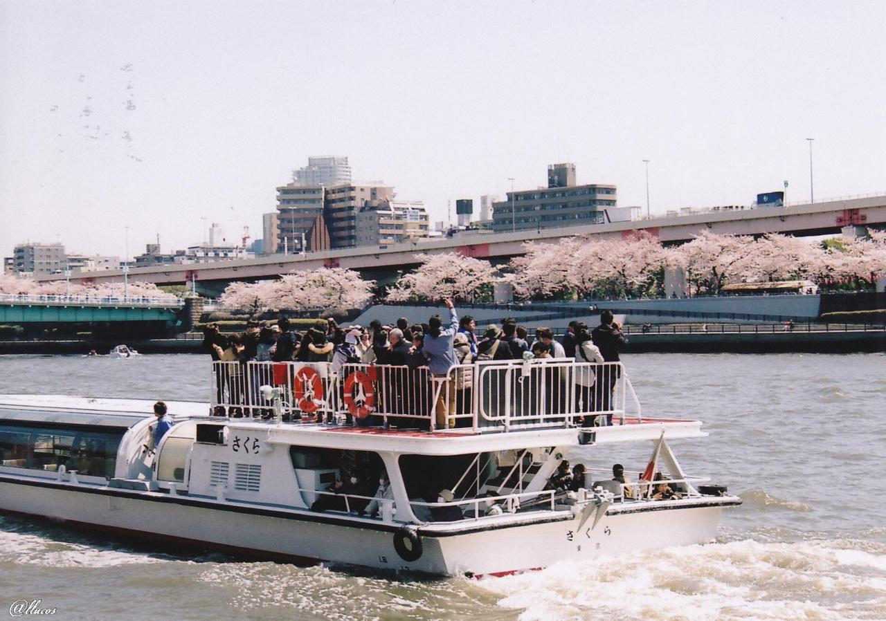 A boat named さくら、which means cherry blossoms :)