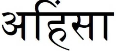 A brief description of ahimsa for those unfamiliar: Ahimsa means kindness and non-violence towards all living things including animals; it respects living beings as a unity, the belief that all living things are connected.  can't believe how many notes this got!  reblogging TO CHANGE THE SOURCE BACK. make your own stuff people. still love u tho.