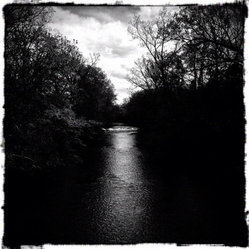 From the banks of Red Cedar #645pro #snapseed #iphone #pixlromatic #trees #river #river #filterstorm #msu (Taken with instagram)
