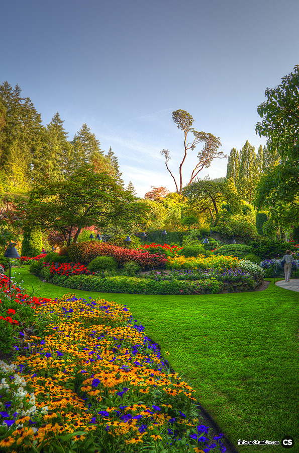 the sunken garden seen by day at Butchart Gardens. victoria, BC.