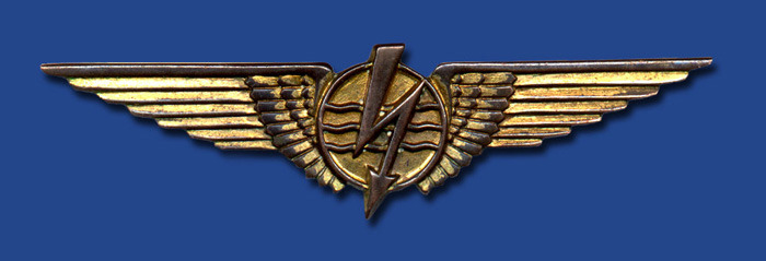 Brazilian Military Radiator Badge  at ww2 wings