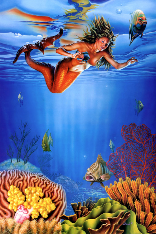 Another Mermaid painting by Barclay Shaw, this one apparently a personal work.  The girl is nice, but for me it's the sponges and coral that really make this painting marvellous.  It looks like he put a lot of work and attention into them. Avail yourself of the great Barclay Shaw resources here and here.