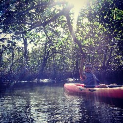 #kayaking #oleta #adventure #mangroves #water #peaceful #sunlight #nature #beauty (Taken with instagram)