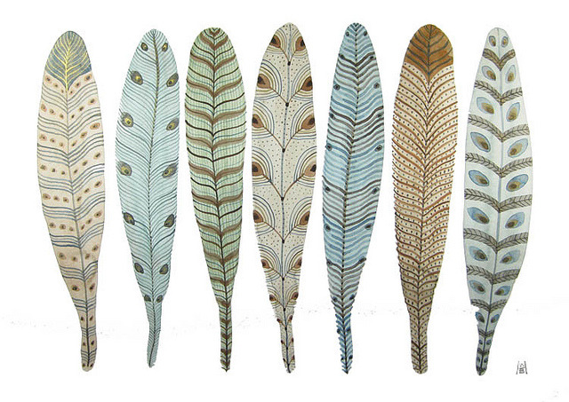 fanciful feather collection no. 1 by Golly Bard on Flickr.