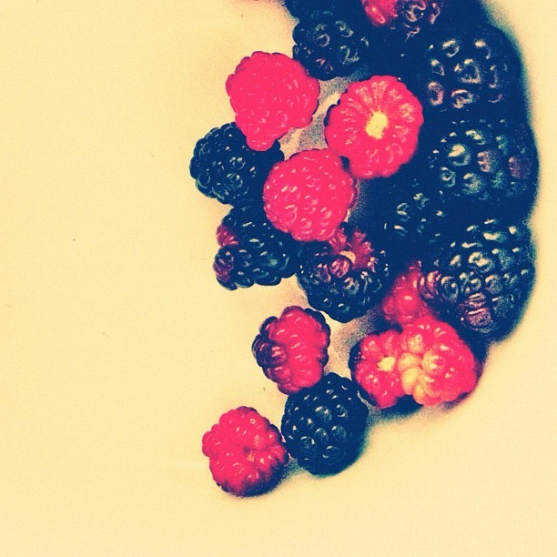 Who knew my backyard had it in her. #berries (Taken with instagram)