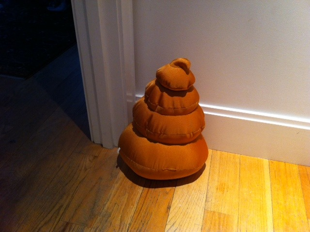 paddyjohnson:  A poop cushion.