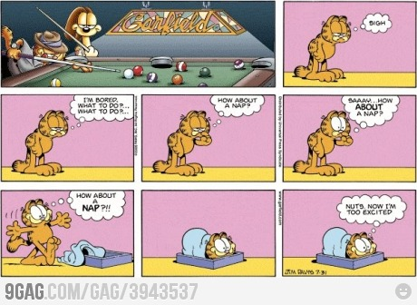 9gag:  Epic Garfield is epic.
