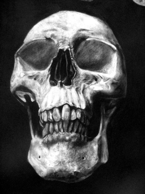 Dis skull has a closeup.