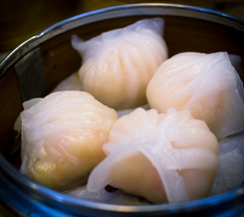 har gow (shrimp dumplings) from new port restaurant, sunnyvale, ca