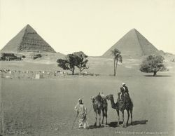 myuti:  Photograph via The New York Public Library Digital Gallery  Pyramids at Giza