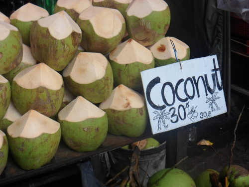 I love green coconut  alaea:  yumyumyumm