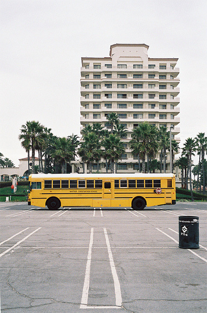 dograffitinotdrugs:  Bus by coffee with sugar on Flickr.