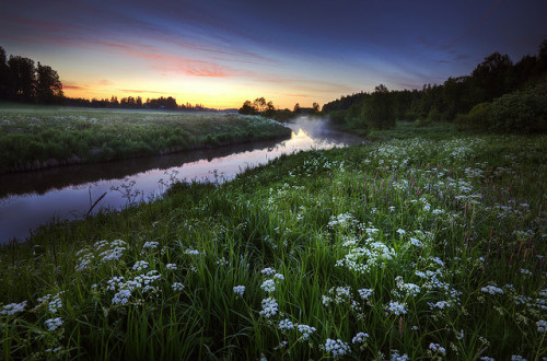 Summer Night by Latyrx on Flickr.