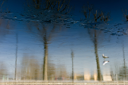 #Leica M9, #Summilux M 50mm f1.4 asph., #Paris, #Reflet, #Reflection