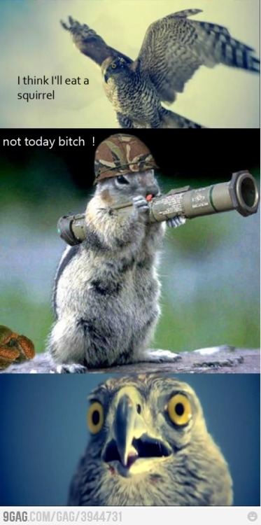 9gag:  Not today !
