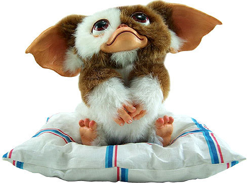 Yesterday a silly man called me a Gremlin. I'm a MOGWAI stoopid!