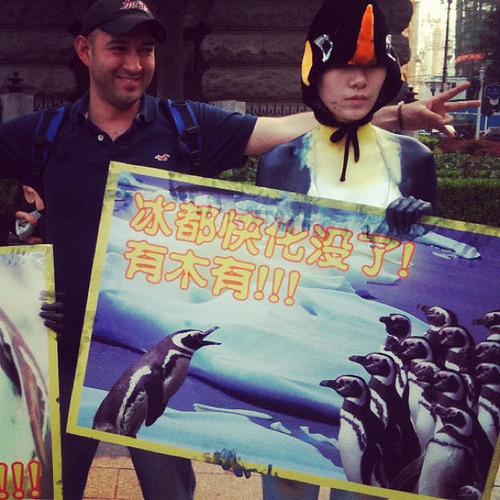 Performance Art Activism : chinese art students painted like penguins and protesting the decline of standards protecting the environment. #china Student organzed Global warming act - penguins & Juan. Wuhan, China (by Tricia Wang 王圣捷)