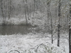 Snow in Western Pa on April 23, 2012!  You got to love it!
