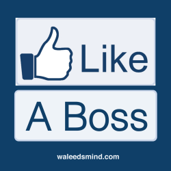 Like A Boss - Facebook style