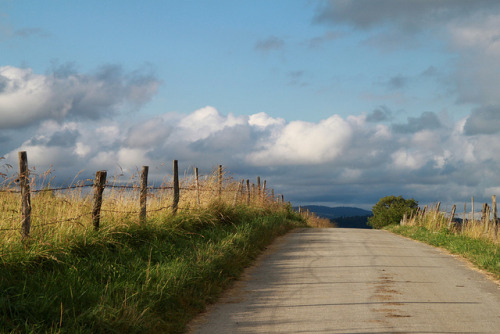 agoodthinghappened:  Quiet road by christing-O- on Flickr.