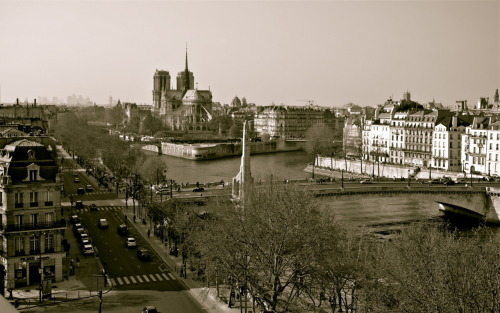 """Notre Dame"", Paris, April 2012 Sébastien A. Photography"
