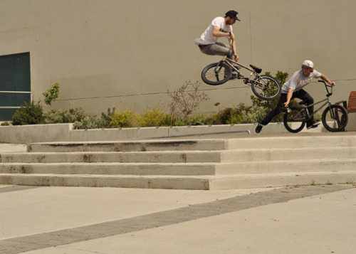 Luke Santucci - Bump jump whip up four stair in a line for taylor elvy