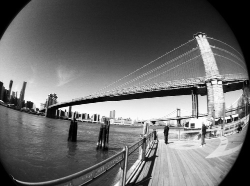 Fish Eye Bridge on Flickr.