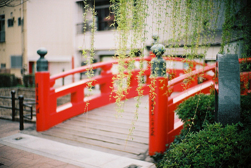 cruisingthesites:  melodyandviolence:  Harimaya Bridge (by oceanus2007 (***busy***))    You have to follow this blog, it's amazing