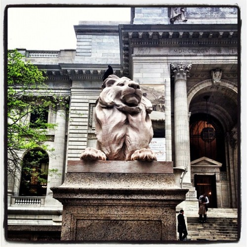 Not Sure If This Is #Patience Or #Fortitude At The #NewYorkPublicLibrary - #nyc #landmarked #travel #bestoftheday  (Taken with instagram)