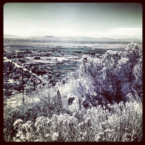 This is why I hike <3 #summer #outdoors #utah #landscape #pretty  (Taken with instagram)
