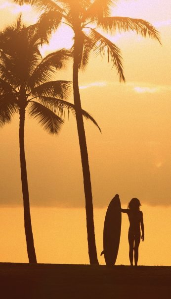 bombereyewear:  surf dreams
