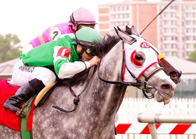 Idle Talk wins the Dahlia Stakes at Pimlico over In the Rough (Photo by Jim McCue)