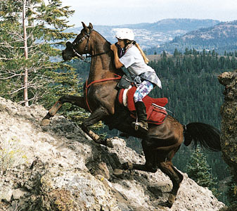 Endurance riding is not to be taken lightly.