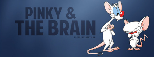 Pinky And The Brain Facebook Cover