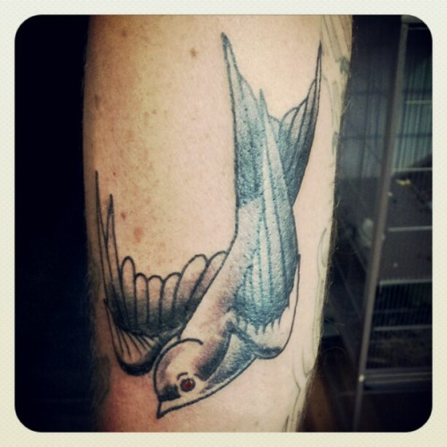 Just finshed this little guy up on @t_hesh #sparrow #tattoo  (Taken with instagram)