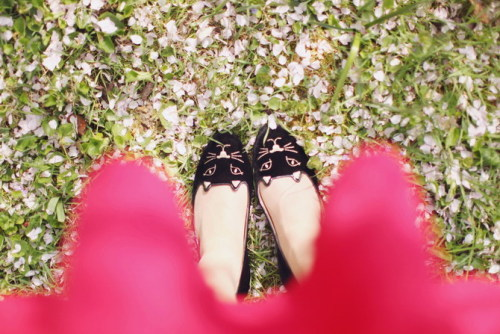 what-do-i-wear:  Shoes : Charlotte Olympia (image: thecherryblossomgirl)  these are almost $1,000 so I'm either going to be saving for a long time or making them myself. probably the DIY version! WITH SEQUINS!!!!!!!!!!!!!!!!