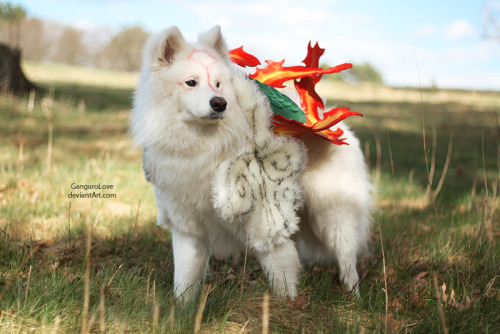 Ōkami Amaterasu from OkamiCosplayer: DantePhotographer: GanguroLove